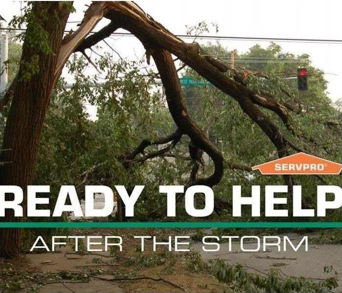 "A fallen broken tree with flood around street and SERVPRO logo with caption ""ready to help after the storm"""