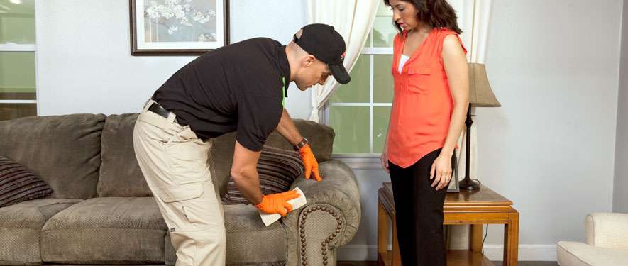 Ludington, MI carpet upholstery cleaning