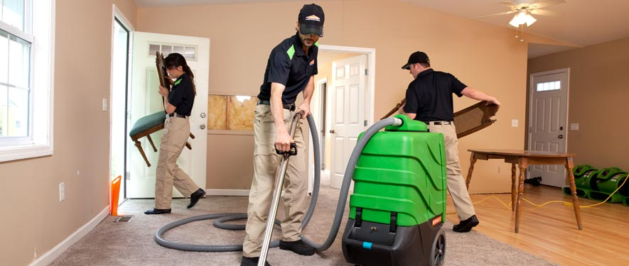 Ludington, MI cleaning services